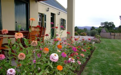 De Denne Country Guesthouse Review